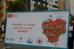 14dia-corazon